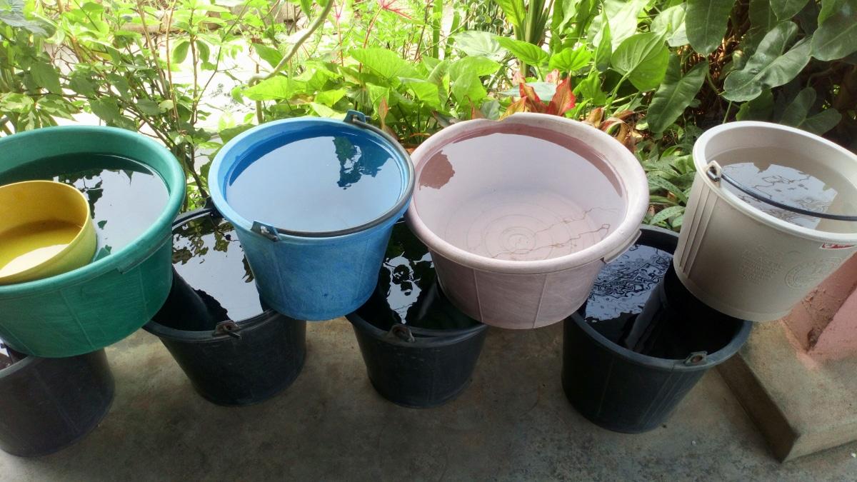 Rain in pots