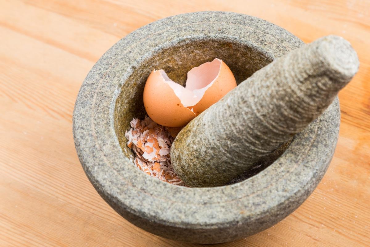 Crushed Eggshell