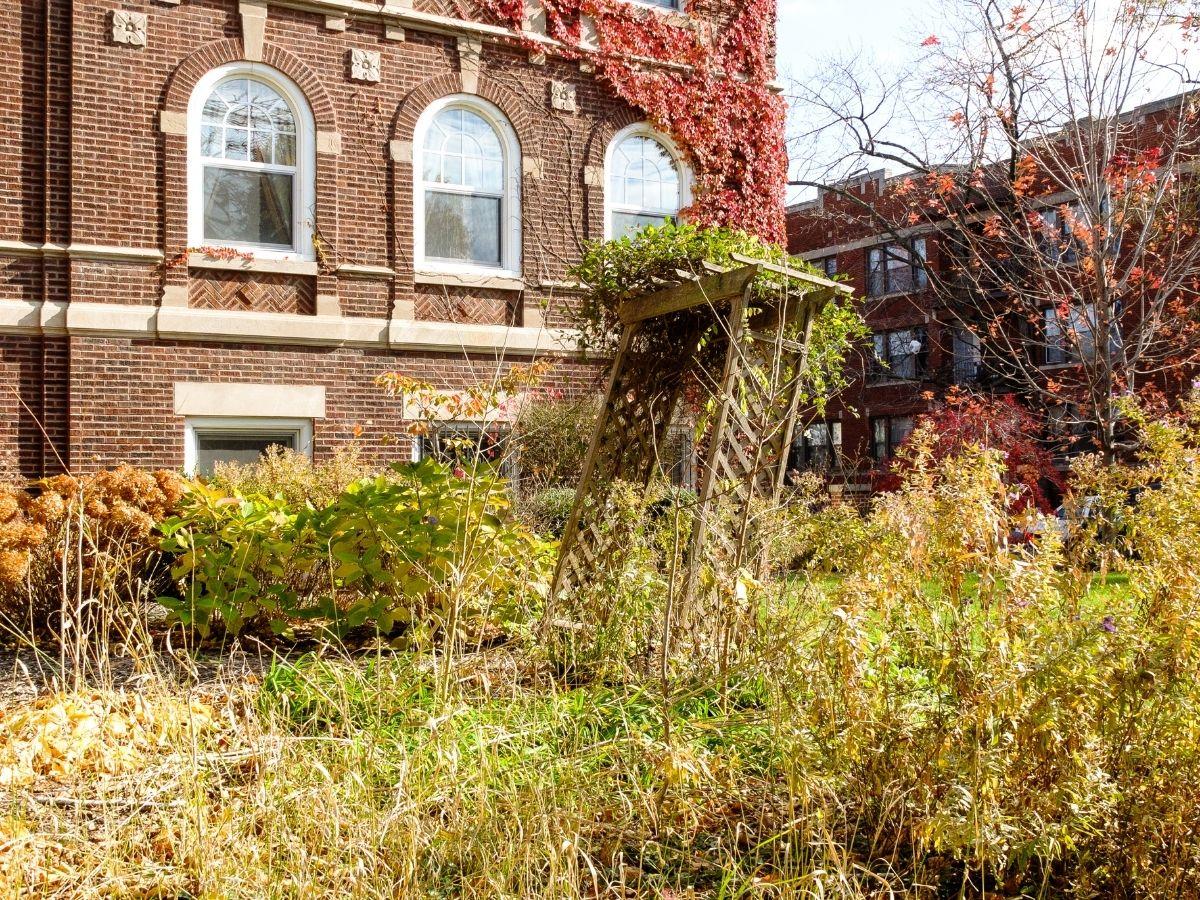 Fall Garden Mess