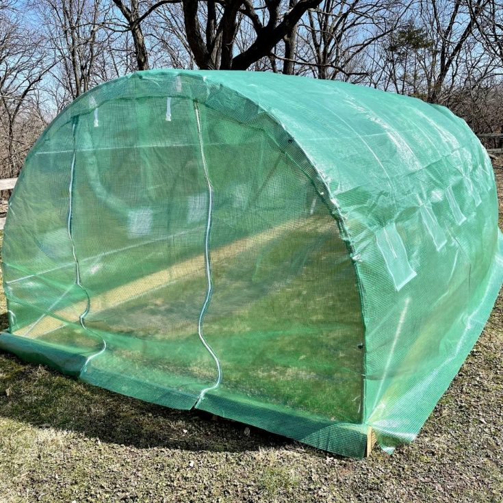 Greenhouse with closed front flap