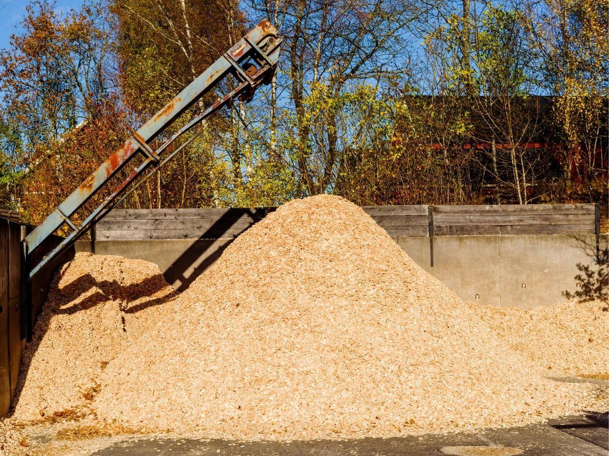 Pile of sawdust