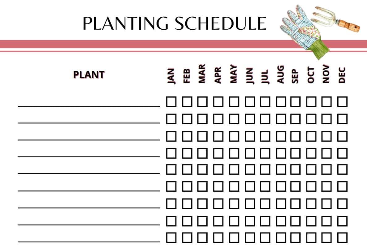 Garden Planner Planting Schedule