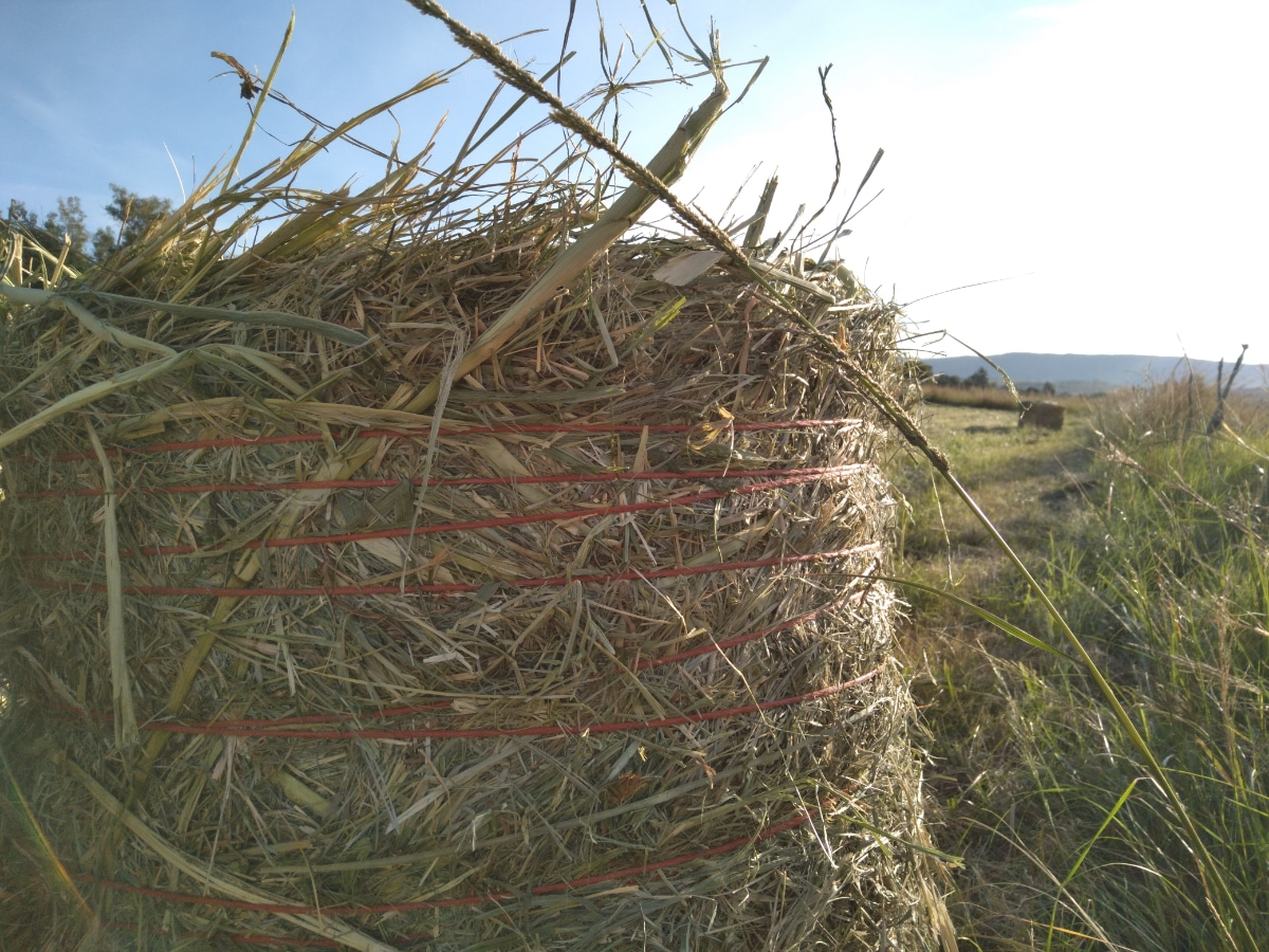 Straw Bale with Strings