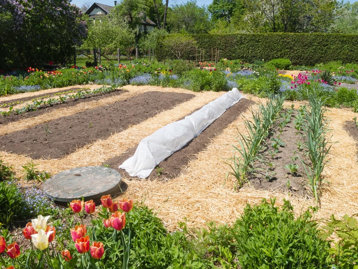 Straw Garden Paths