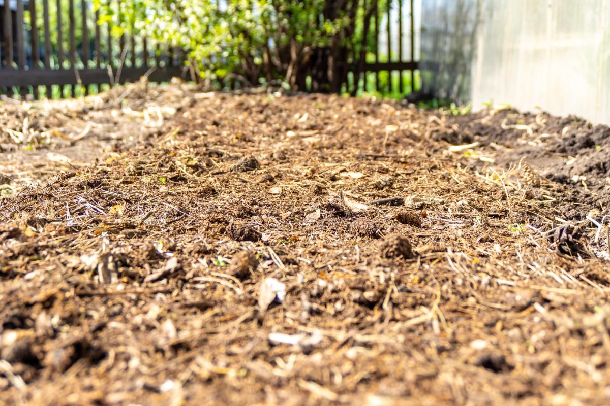 Straw in Soil