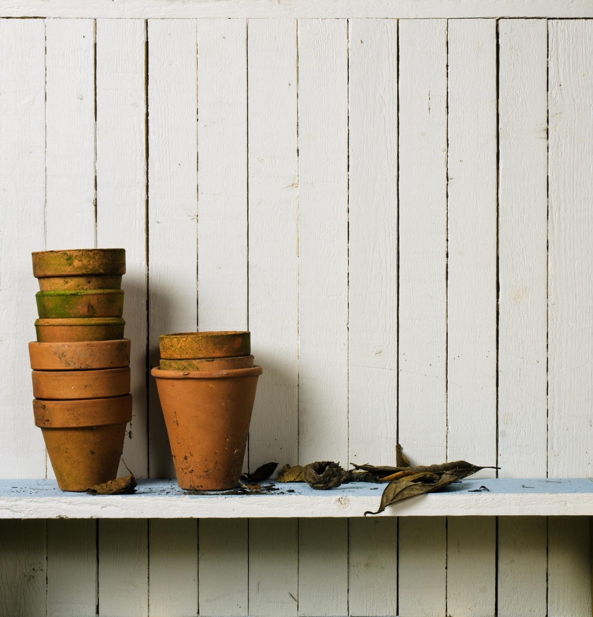 Dirty Garden Pots