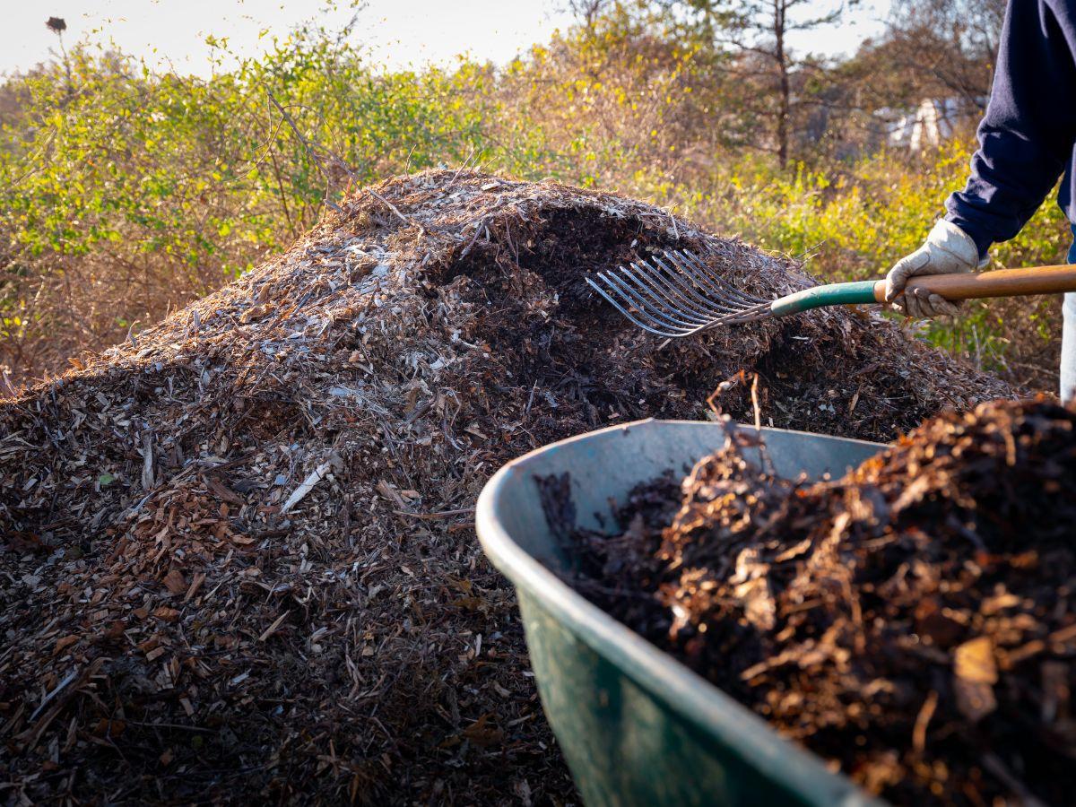 Hugelkultur compost pile