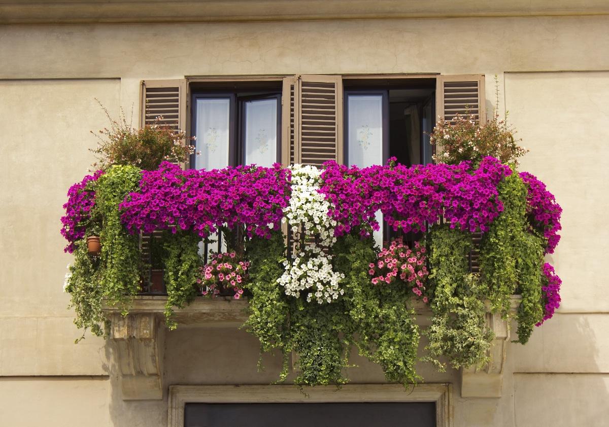 Balcony Flower Garden