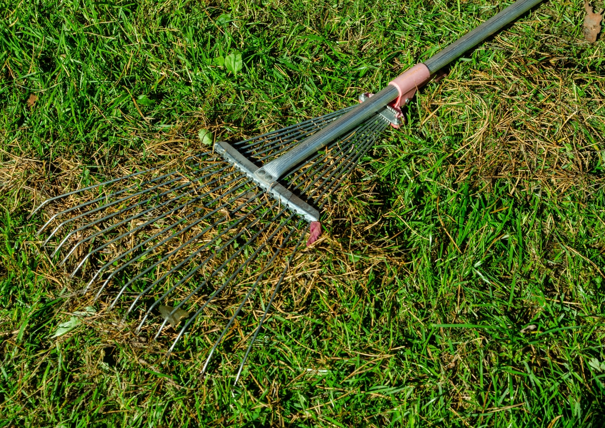 Gardening with Pine Needles