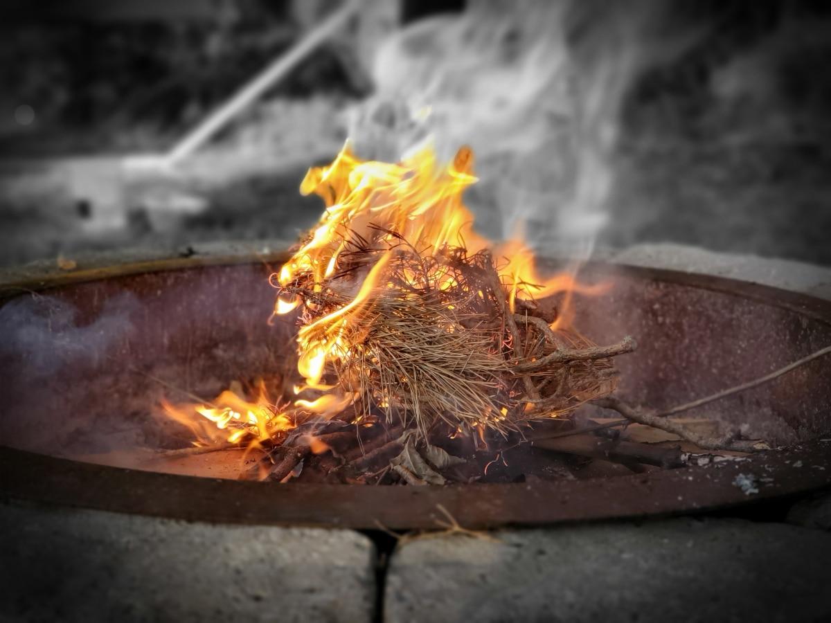 Pine Needle Fire