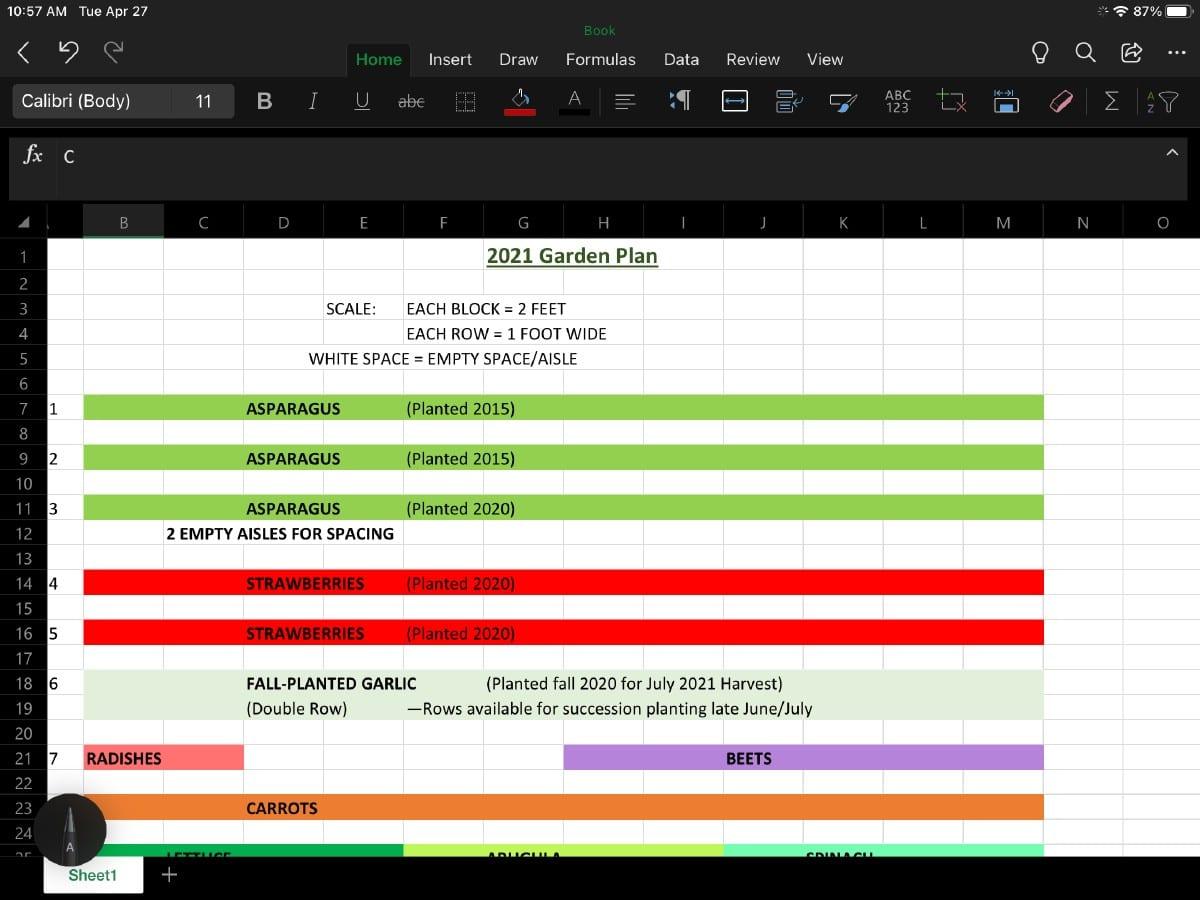 Spreadsheet program used for planning a vegetable garden layout