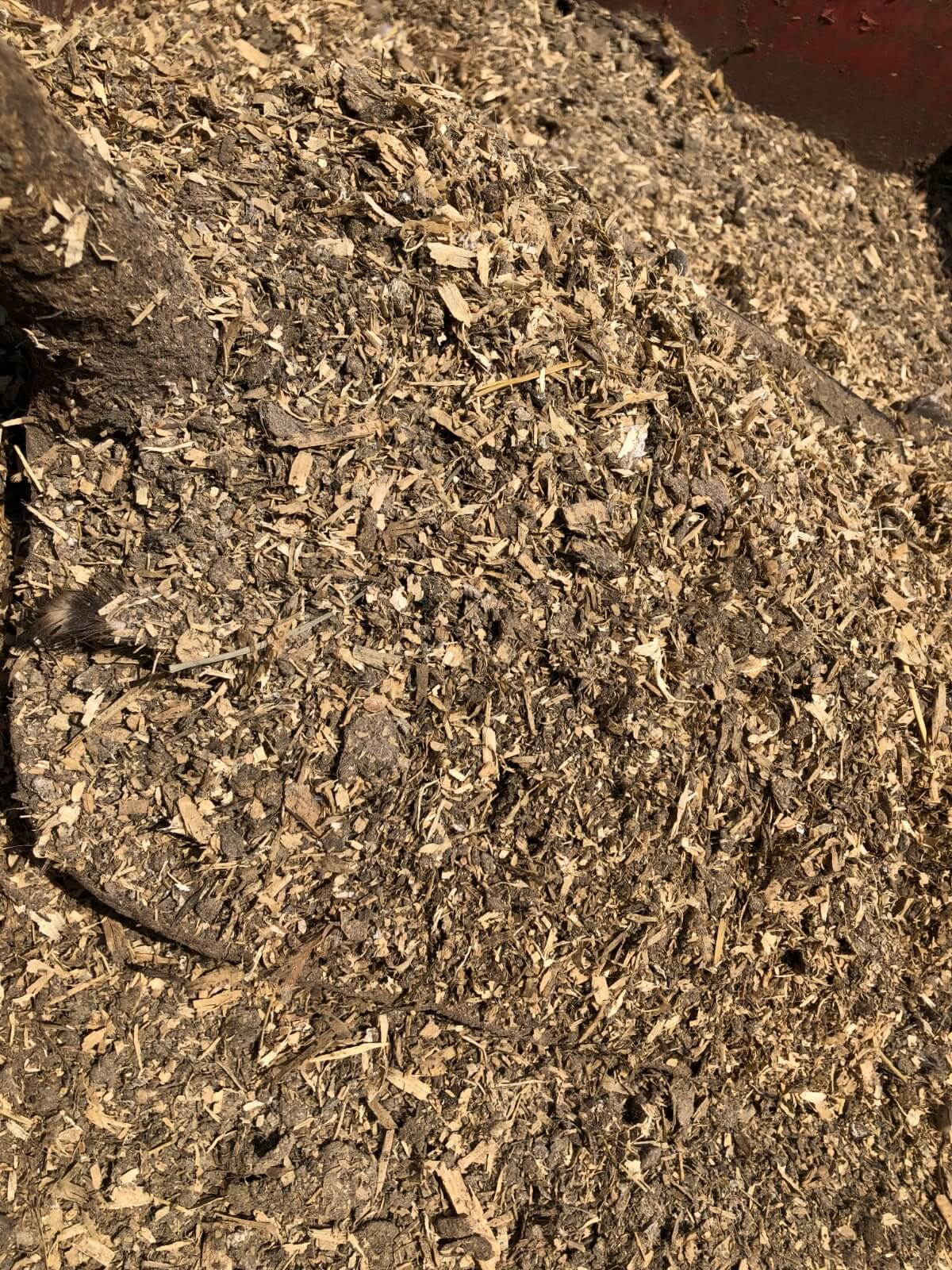 old chicken manure with shavings