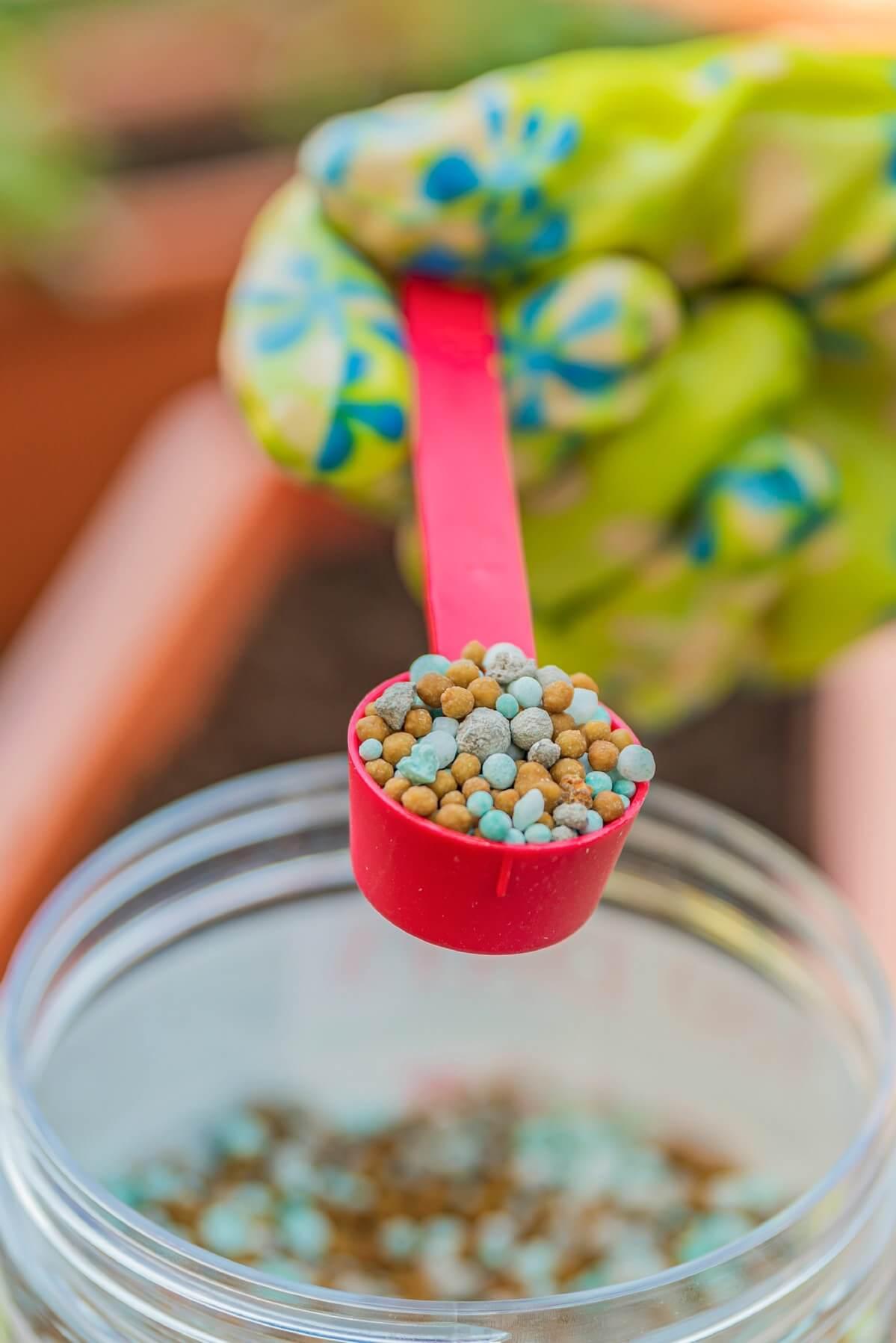 red scoop of plant fertilizer