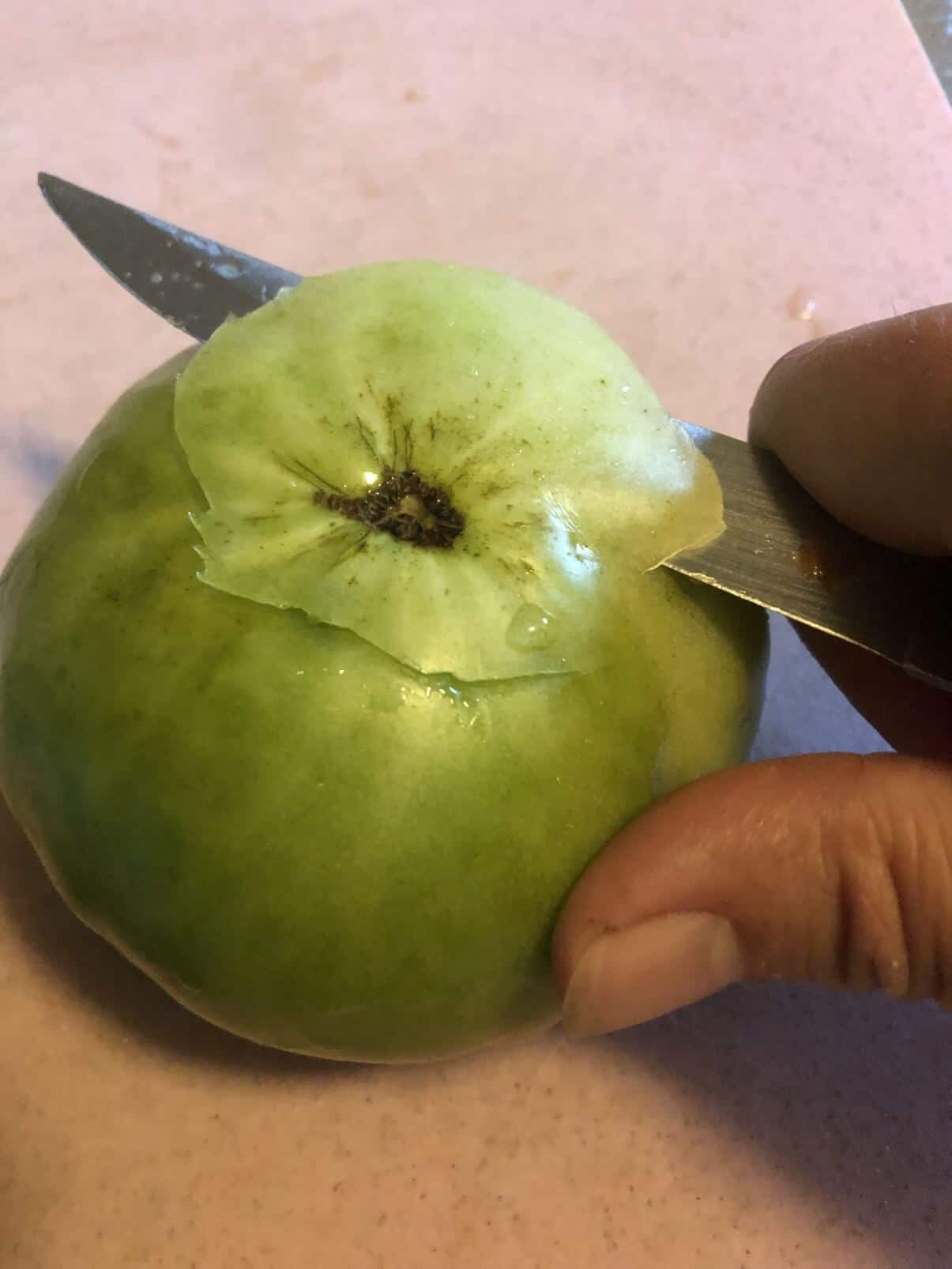 cutting blossom end off green tomato