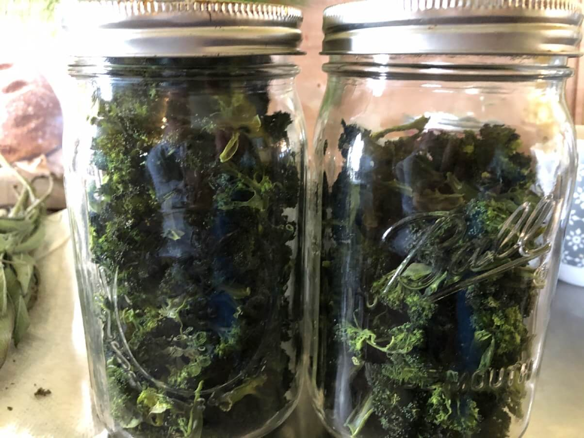 broccoli dried and stored in mason jars