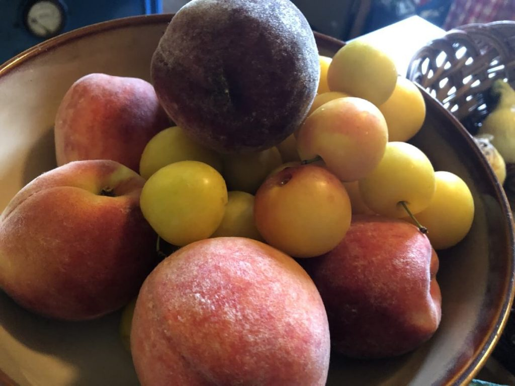 plums and peaches in a bowl on counter